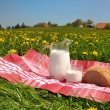 Jug of milk and bread on spring meadow. Emmental region, Swi — Stock Photo #20935783