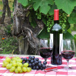 Red wine and grapes served at a picnic - Stock Photo