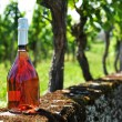 Bottle of champagne against vineyards - Stock Photo