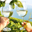 Royalty-Free Stock Photo: Two hands holding wineglases against vineyards in Lavaux region,