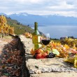 Red wine and grapes on the terrace of vineyard in Lavaux region, — Stock Photo #20938025