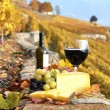 Wine, grapes and cheese against vineyards in Lavaux region, Swit — Stock Photo #20938233