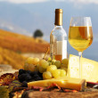 Wine, grapes and cheese against vineyards in Lavaux region, Swit — Stock Photo #20938287