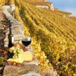 Wine, grapes and cheese against vineyards in Lavaux region, Swit — Stock Photo #20938319