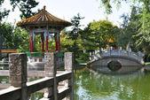 Chinese garden in Zurich — Стоковое фото
