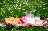 Milk, cheese and bread served at a picnic on Alpine meadow, Swit — Stock Photo
