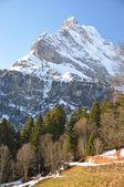 Braunwald, szwajcaria — Zdjęcie stockowe