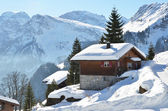Braunwald, Switzerland — Foto Stock