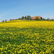 Stock Photo: Spring in Emmental, Switzerland