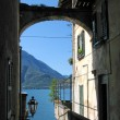 Romantic view to the famous Italian lake Como from Varenna town — Stock Photo #21003405