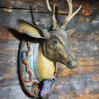 Trophy on a wooden wall of a lodge - Stock Photo