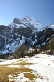 Spring in the Alps. Ortstock mount, Switzerland — Stock Photo