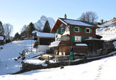 Spring in Swiss Alps. Ortstock mount — Stock Photo