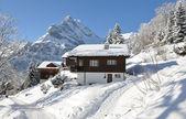 Alpine scenery, Braunwald, Switzerland — Stock Photo