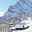 Stock Photo: Braunwald, famous Swiss skiing resort