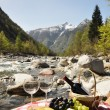 Red wine, cheese and grapes served at a picnic. Verzasca valley, — Stock Photo #21017555