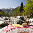 Stock Photo: Red wine, cheese and grapes served at a picnic. Verzasca valley,