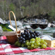 Red wine, cheese and grapes served at a picnic. Verzasca valley, — Stock Photo #21017657