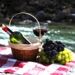 Red wine, cheese and grapes served at a picnic. Verzasca valley, — Stock Photo #21017663