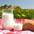 Jug of milk and bread on spring meadow. Emmental region, Swi — Stock Photo #21018627