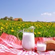 Jug of milk and bread on spring meadow. Emmental region, Swi — Stock Photo #21018683