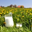 Jug of milk on spring meadow. Emmental region, Switzerland — Stock Photo #21018703