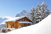 альпийские пейзажи. швейцария — Стоковое фото
