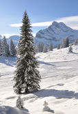Ortstock monte 2717m. braunwald, suiza — Foto de Stock