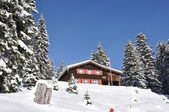 Holiday cottage in Braunwald, famous Swiss skiing resort — Stock Photo