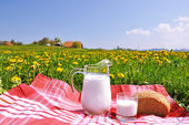 Jug of milk and bread on the spring meadow. Emmental region, Swi — Stock Photo