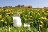 Jug of milk on the spring meadow. Emmental region, Switzerland — Stock Photo