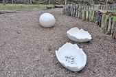 巨型蛋壳 — 图库照片