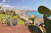Torviscas Playa. Tenerife island, canaries — Stock Photo