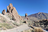 National park Canadas at Teide volcano. Tenerife, Canaries — Stock Photo