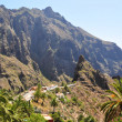 Village of Masca in the mountains of Tenerife island, Canaries — Stock Photo