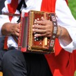 Accordionist — Stockfoto