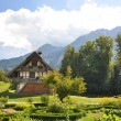 traditional swiss farm house — Stock Photo #21036565