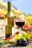Red wine and grapes on the terrace vineyard in Lavaux region, Sw — Stock Photo