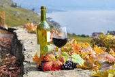 Red wine and a branch of grapes on the terrace vineyard in Lavau — Stock Photo