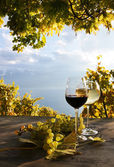 Pair of wineglasses and bunch of grapes. Lavaux region, Switzer — Stock Photo