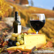 Wine, grapes and cheese against vineyards in Lavaux region, Swit — Stock Photo #21042317