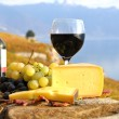 Red wine, grapes and cheese on the terrace of vineyard in Lavaux — Stock Photo