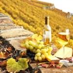 Wineglass and a bottle on the terrace vineyard in Lavaux region, — Stock Photo #21042903