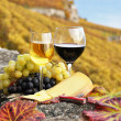 Two wineglasses, cheese and grapes on the terrace of vineyard in — Stock Photo