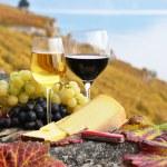 2 copo de vinho, queijo e uvas no terraço do vinhedo em — Foto Stock