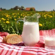 Stock Photo: Jug of milk and bread on spring meadow. Emmental region, Swi