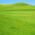 Green hills — Stock Photo #21048693