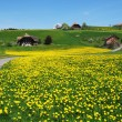 Emmental region, Switzerland - Stock Photo