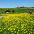 Emmental region, Switzerland — Stockfoto