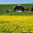 Scenic meadow in Emmental region, Switzerland - Stock Photo